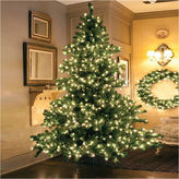 Asstd National Brand 9' Pre-Lit Middleton Full Layered Artificial Christmas Tree with Clear Lights