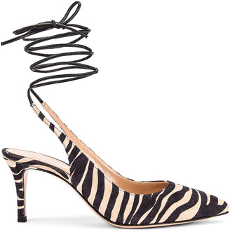 Gianvito Rossi Strappy Kitten Heel Pumps in Zebra & Black | FWRD