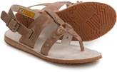 Caterpillar Birdsong Strappy Sandals (For Women)