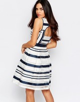 Warehouse Organza Stripe Dress