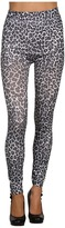 Gabriella Rocha Iria Legging (Leopard Print) - Apparel
