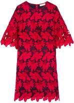 Tory Burch Nicola Dress