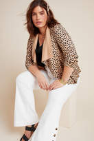 Bagatelle Draped Cheetah Jacket