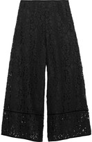 See by Chloe Velvet-trimmed Corded Lace Culottes - Black