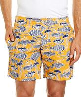 Sportscraft Derek Swim Shorts