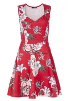 Quiz Red Floral Print Sweetheart Skater Dress