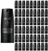 Axe Deodorant Body Spray Mens Fragrance 150ml 5.07oz (60 Pack, )