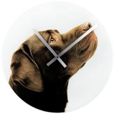 Present Time Animal World - Crazy Dogs Choco Lab Wall Clock - White