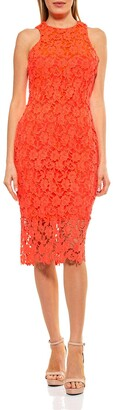 Alexia Admor Floral Crochet Lace Midi Dress