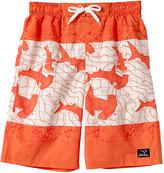 Big Chill Orange & Cream Shark Board Shorts - Toddler & Boys