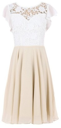 Dorothy Perkins Womens Jolie Moi Beige Contrast Lace Skater Dress