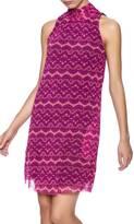 Sweet Pea Lynn Dress