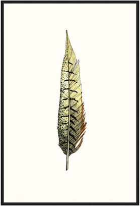 Jonathan Bass Studio Painted Feather A, Decorative Framed Hand Embellished Canvas