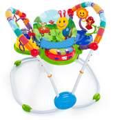 Baby Einstein Activity Jumper Special Edition