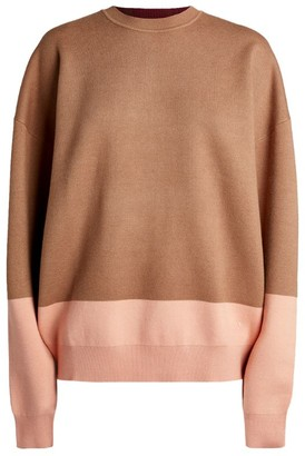 Roksanda Karuo Colour-Block Sweater