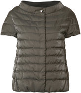 Herno shortsleeved padded jacket - women - Cotton/Polyamide/Polyester - 40