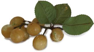 One Kings Lane Vintage Midcentury Italian Alabaster Grapes - Rose Victoria