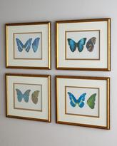 "John-Richard Collection Butterfly Study"" Prints"
