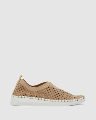 Easy Steps - Women's Brown Ballet Flats - Dot - Size One Size, 37 at The Iconic
