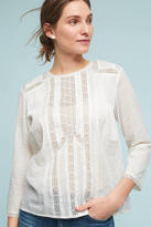 Indi & Cold Rylan Lace Pintucked Blouse