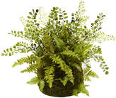 Asstd National Brand Nearly Natural Mixed Fern With Twig And Moss Basket