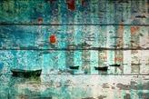 Parvez Taj Mandrem Wall Art
