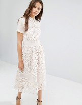 Warehouse Lace Collar midi Dress