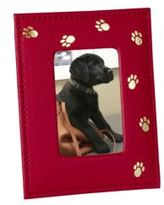 Graphic Image Paw-Print Leather Frame