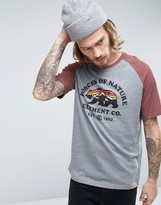 Element Vista Raglan T-shirt In Grey Heather