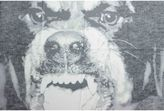 Givenchy Rottweiler Scarf