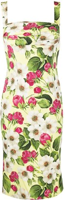 Dolce & Gabbana Rose Print Charmeuse Midi Dress