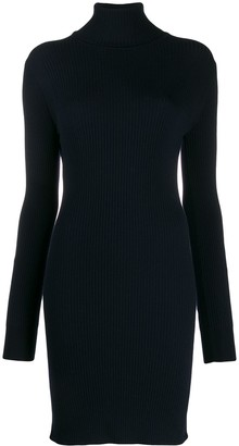 Sportmax Turtle-Neck Fitted Dress