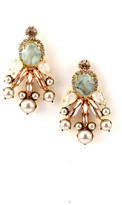 Elizabeth Cole Knowles Earrings