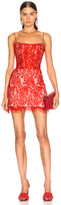 Rasario for FWRD Lace Mini Dress in Red | FWRD