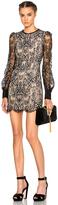 Alexander McQueen Butterfly Lace Mini Dress on Black & Flesh