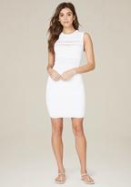 Bebe Colette Pointelle Dress