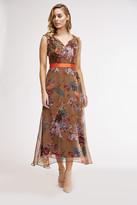 Eva Franco Eudora Dress In Fall Garden