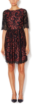 Shoshanna Janelle Scalloped Lace Dress