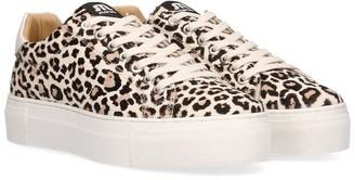 Maruti Footwear Ted Hairon Leopard Sneakers - 40