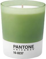 Pantone Scented Candle 16-0237 - Mandarine and Tea - 150hr