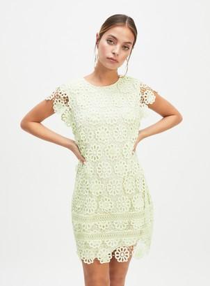 Miss Selfridge PETITE Green 3D Lace Dress