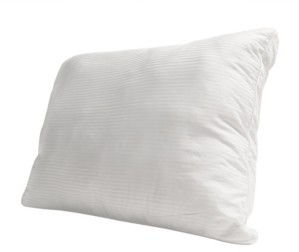 Protect A Bed Protect-a-Bed Premium Down Alternative Standard Pillow