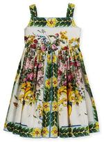 Dolce & Gabbana Flower Vase Printed Cotton Dress, Size 2-6
