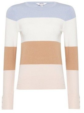 Dorothy Perkins Womens Dp Petite Stripe Crew Neck Jumper