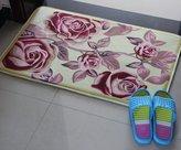 M0030606 thick doo mats/Bedoom kitchen bathoom patunam pad