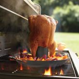 Sur La Table Pro Nonstick Vertical Poultry Roaster