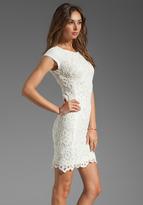 Rebecca Taylor All Lace Dress
