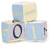 Edgehill Collection Milestone Blocks