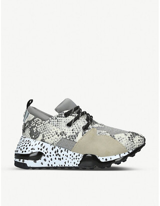 Steve Madden Cliff snakeskin-embossed leather and mesh trainers
