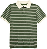 This is Not a Polo Shirt Striped Polo Shirt